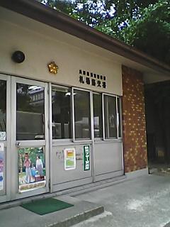 Pkyukokud9.JPG