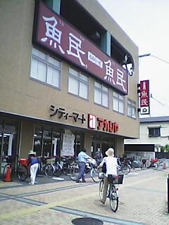 Pnisinomiya0.jpg