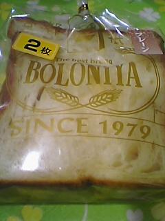 Pboloniya2.JPG