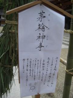 Pchinowa2.jpg