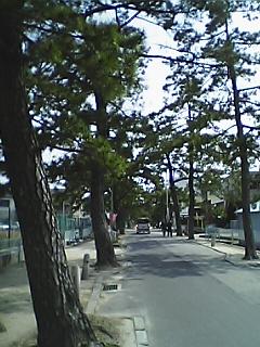 Phirotaj7.JPG