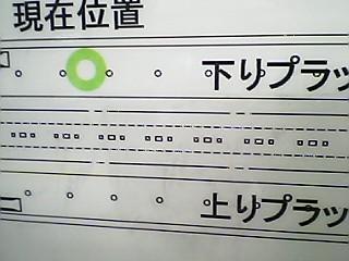 Pkasugano3.JPG
