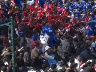Pkokoyakyu8.jpg