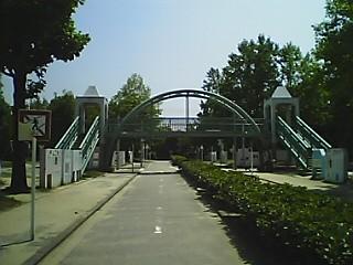 Pkotu6.JPG