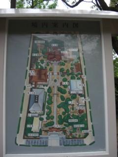 Pminatogawa5.jpg
