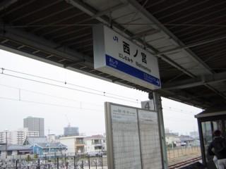 Pnisinomiya.jpg