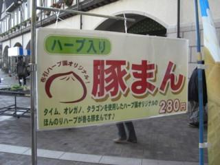 Pnunohabu3.jpg