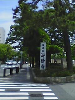 Prokukai2.JPG