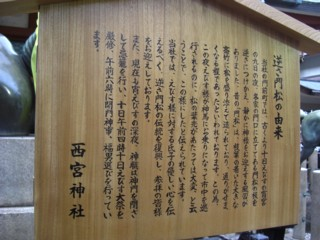 Psakakado3.jpg