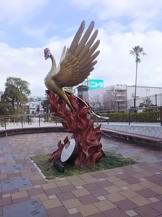 Ptok2.jpg