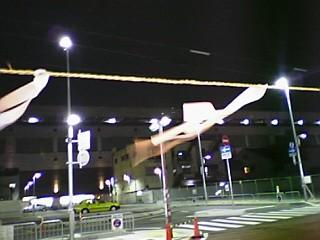 Pyoimiyam5.JPG