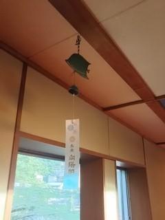 arimaneko17.jpg