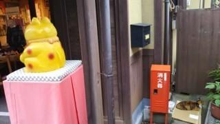 arimaneko30.jpg