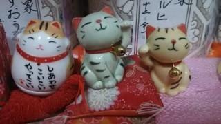 arimaneko35.jpg