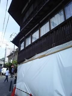 arimaneko4.jpg
