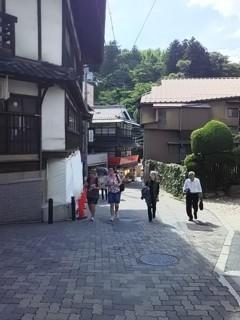 arimaneko5.jpg